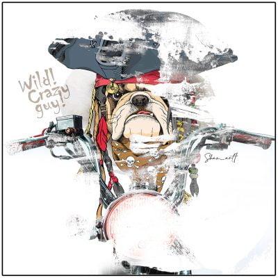 Bulldog-بولداگ